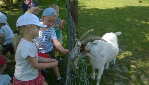Najmłodsze przedszkolaki w Galinach