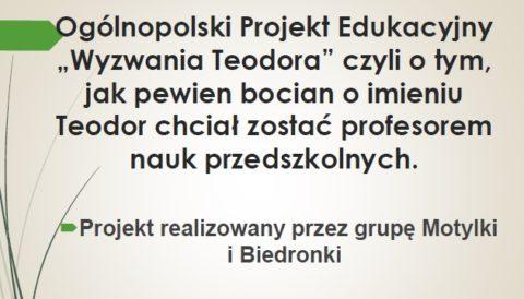 """Podsumowanie Ogólnopolskiego Projektu Edukacyjnego """"Wyzwania Teodora"""""""